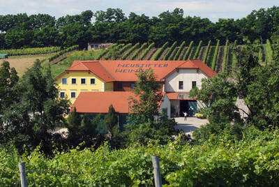 our winery in the middle of vineyards